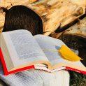 Подвързии за книга Зима - 2 в отворено положение си шритежава и разделителче за страниците